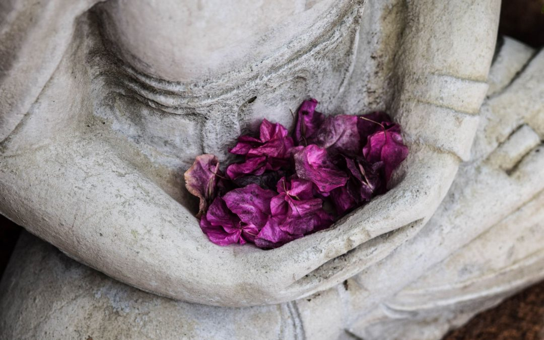What is iRest Yoga Nidra Meditation?
